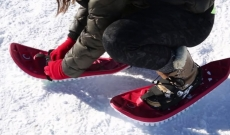 40% off snowshoe rentals for local groups of 4 or more