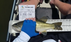 Our 2019 Kayak Bass Fishing Tournament Dates